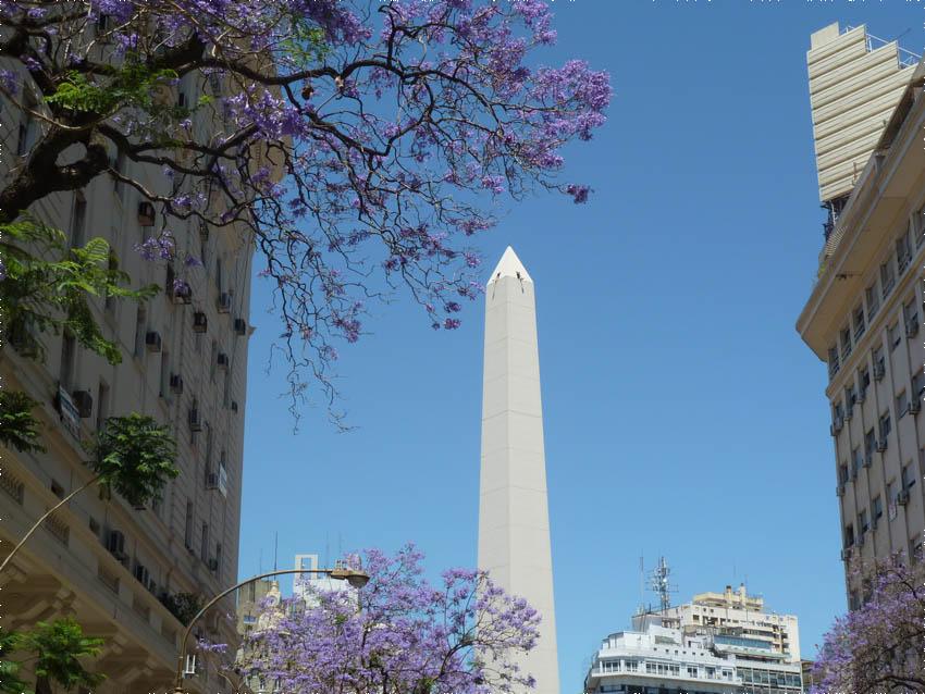 Em novembro a cidade estava cheia de flores :)
