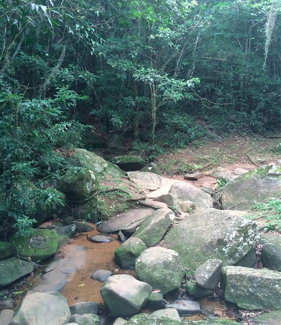 trilha florianópolis