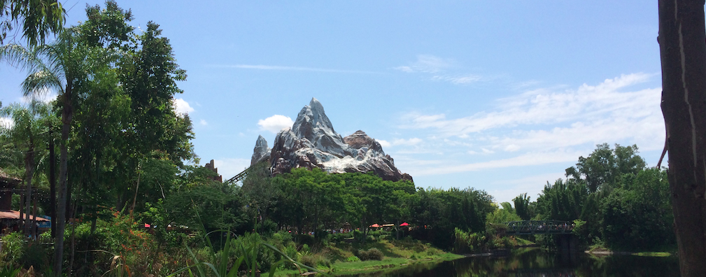 Animal Kingdom – Walt Disney World