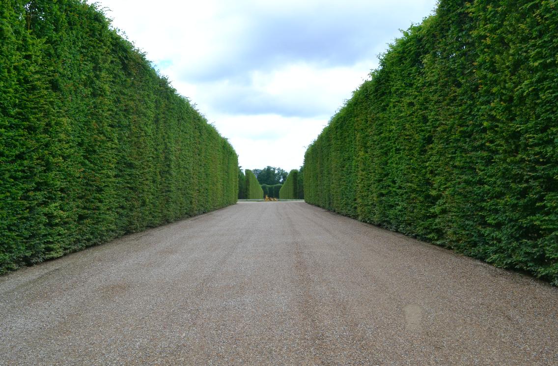 Pelos muitos caminhos até o Petit Trianon