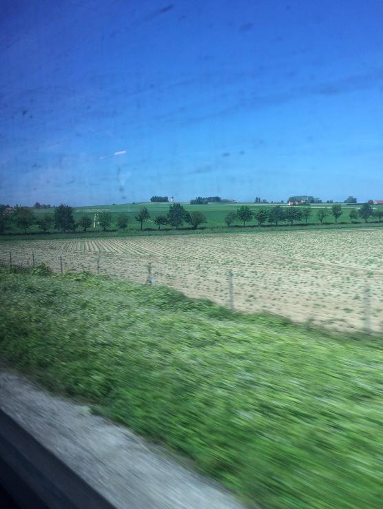 O caminho tem essa vista a maior parte do tempo (e a janela suja do trem, kkk)
