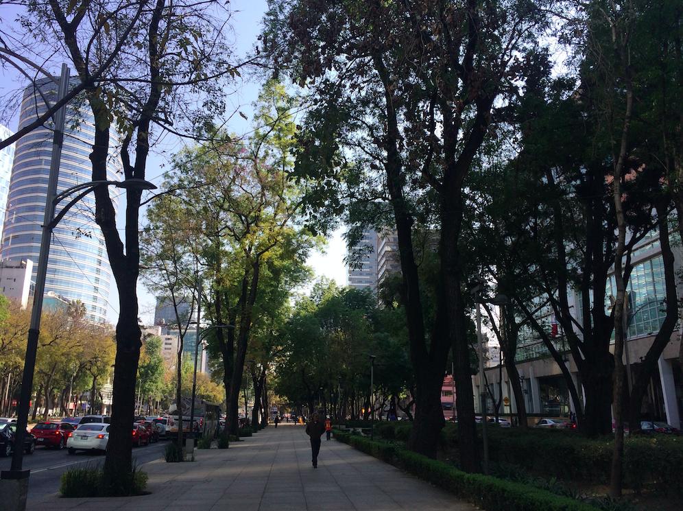 A avenida do nosso hotel era assim. Algumas partes bem arborizadas, outras com mais prédios. Mas muito bonita e movimentada.