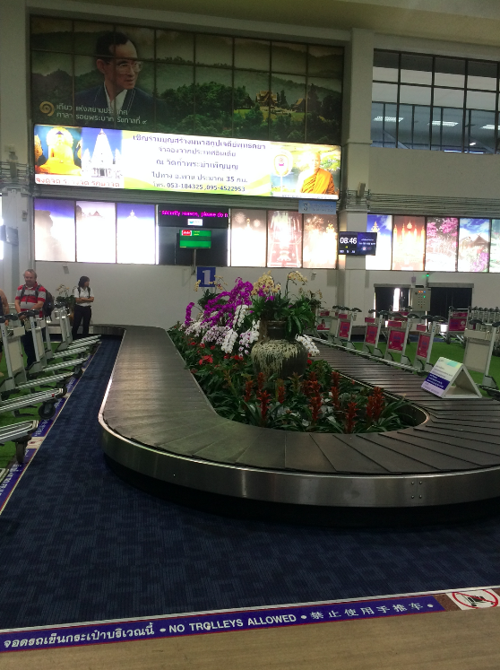 Aeroporto de Chiang Rai, olha que lindas essas orquídeas na esteira de bagagem!
