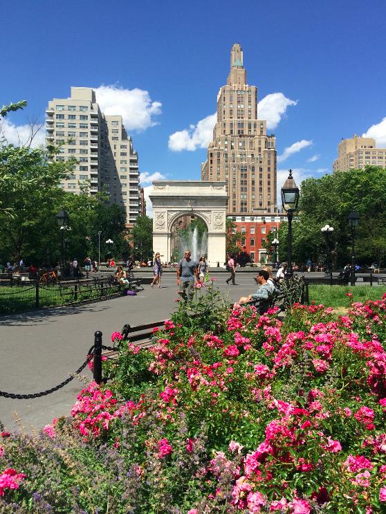 Washington Square Park no verão
