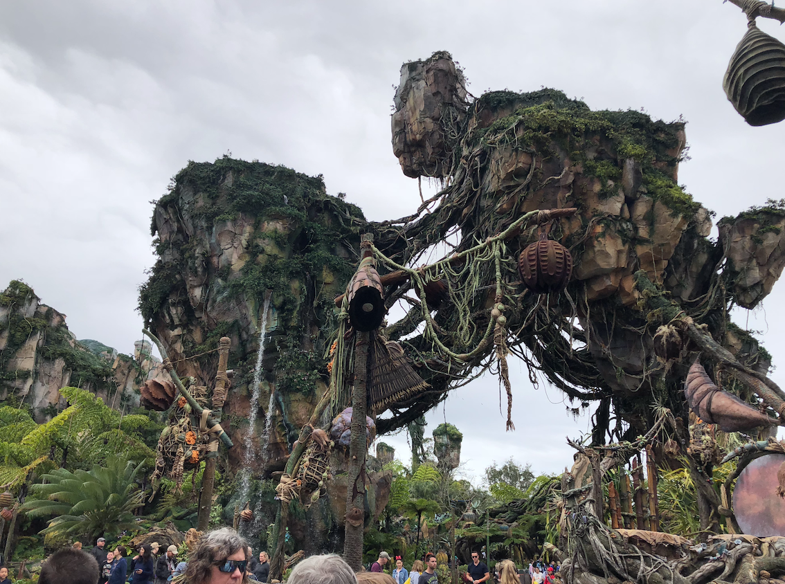 foto da área de Pandora, no animal kingdom na Disney